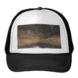 Waves On Point Lobos Trucker Hat