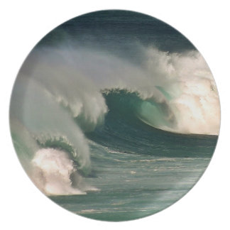Waves Plate