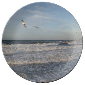 "Waves & Seagulls 10.75"" Decorative Porcelain Plate"