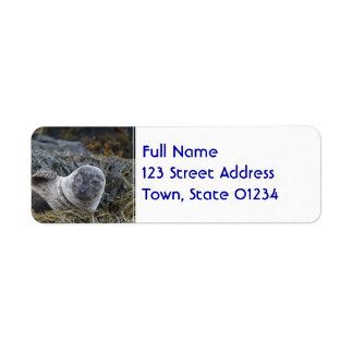 Waving Seal Return Address Label