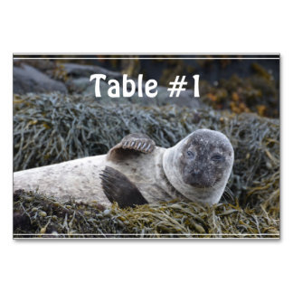 Waving Seal Table Cards