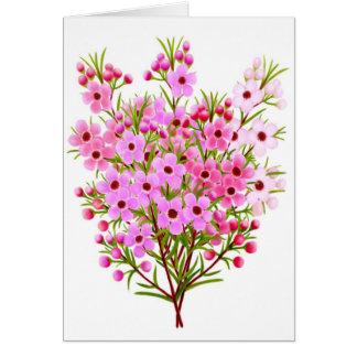 Waxflower Bouquet Greeting Card
