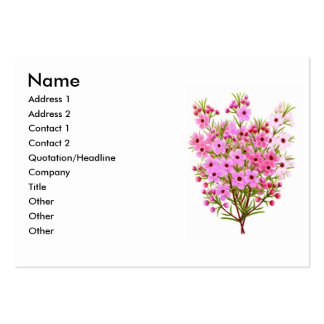 Waxflower Bouquet Profile Card Pack Of Chubby Business Cards
