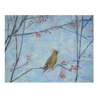 Waxwing 2013 oil on canvas postcard