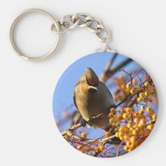 Waxwing Bird Keychain