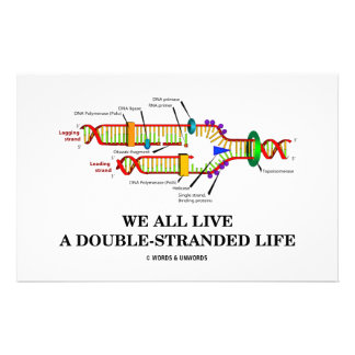 We All Live A Double-Stranded Life (DNA Humor) Custom Stationery