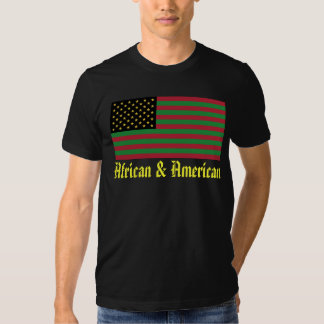 We Are All America - African & American T Shirts