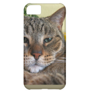 We Are Not Amused Cover For iPhone 5C