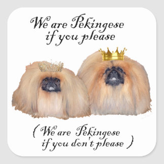 We are Pekingese Square Sticker