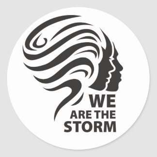 We are the Storm stickers