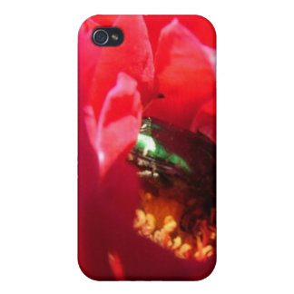 We have a bug covers for iPhone 4
