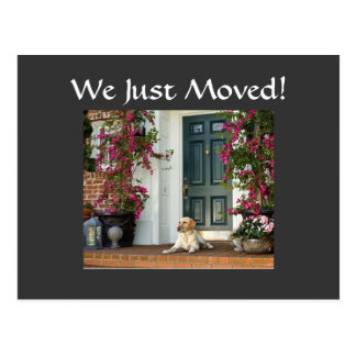 WE JUST MOVED-HOUSEWARMING INVITE POST CARD