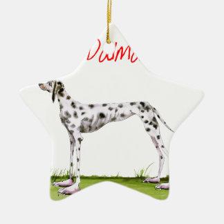 we luv dalmatians from Tony Fernandes Ceramic Star Decoration