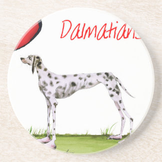 we luv dalmatians from Tony Fernandes Coasters