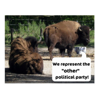 "We represent the ""other"" political party! postcard"