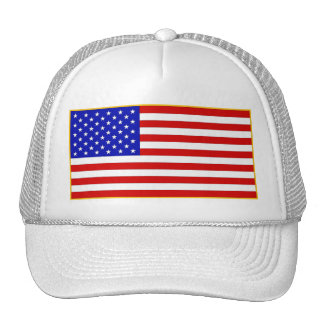 We The People Stars and Stripes Cap