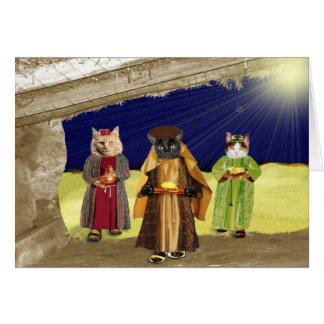 we three cats christmas card