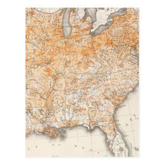 Wealth Distribution, Statistical US Lithograph Postcard