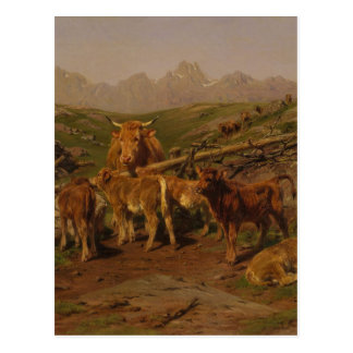 Weaning the Calves by Rosa Bonheur Postcard