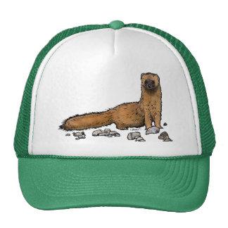 Weasel on a hat! cap