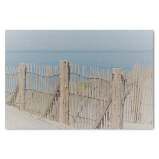 Weathered Beach Fence Tissue Paper