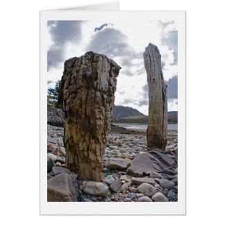 Weathered Net Posts by the Loch Greeting Card