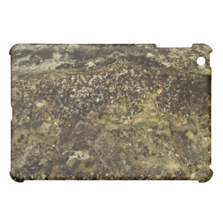 Weathered Stone Effect Design. iPad Mini Cover