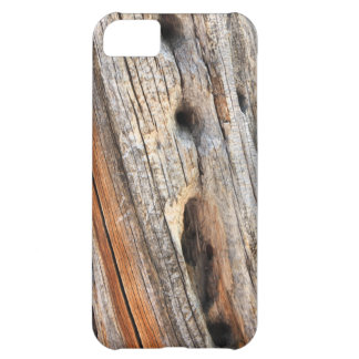 Weathered tree trunk with knotholes iPhone 5C case