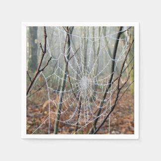 Web of European Garden Spider Paper Napkins