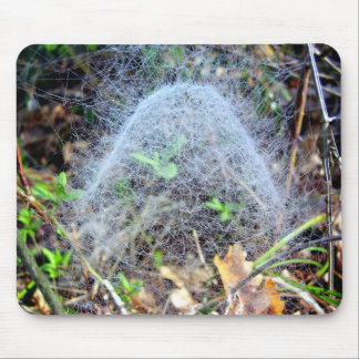 Web of Filmy Dome Spider Mouse Mat