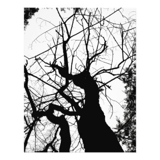 WEBBY TREE BLACK AND WHITE 21.5 CM X 28 CM FLYER