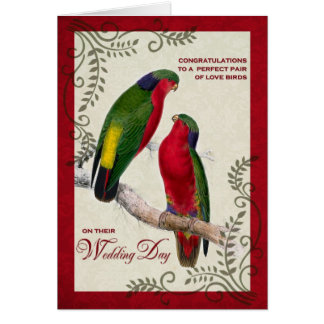 Wedding Congratulations Vintage Lorikeet Parrots Greeting Card