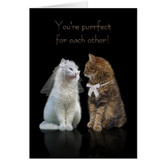 Wedding / Engagement Congratulation for Cat Lovers Greeting Card