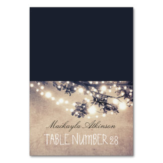 wedding escort cards string lights branches table card