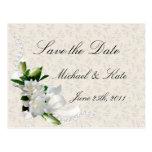 Wedding Gardenias Postcards