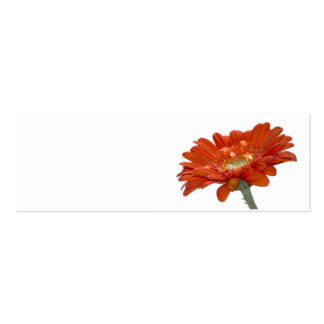 Wedding Place Name Card - Orange Daisy Gerbera Pack Of Skinny Business Cards