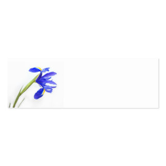 Wedding Place Name Card - purple iris flower Pack Of Skinny Business Cards