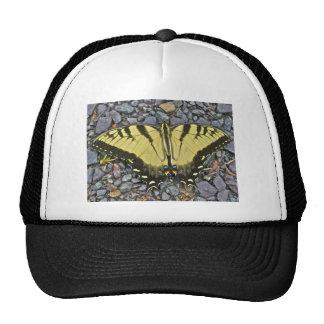 Wedding Swallowtail Butterfly Items Cap