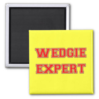 Wedgie Expert Magnets