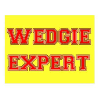 Wedgie Expert Postcard