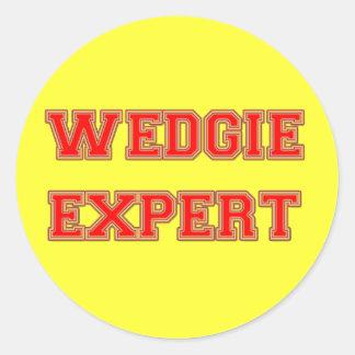 Wedgie Expert Round Sticker