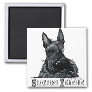 Wee Scottish Terrier Square Magnet