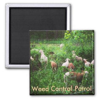 Weed Control Patrol Magnet