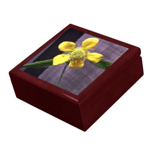 Weed flower trinket boxes
