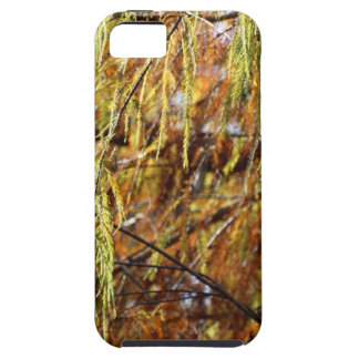 Weeping Autumn Splendor iPhone 5 Covers