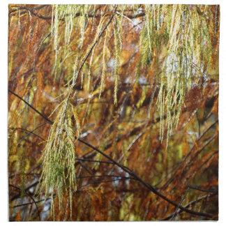 Weeping Autumn Splendor Napkin