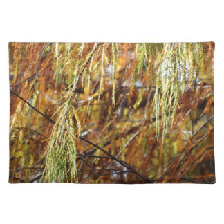 Weeping Autumn Splendor Placemats
