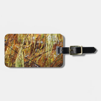Weeping Autumn Splendor Tag For Bags