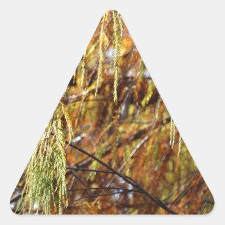 Weeping Autumn Splendor Triangle Sticker