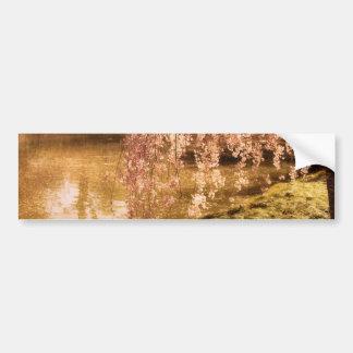 Weeping Cherry Blossoms in Sunlight Bumper Sticker